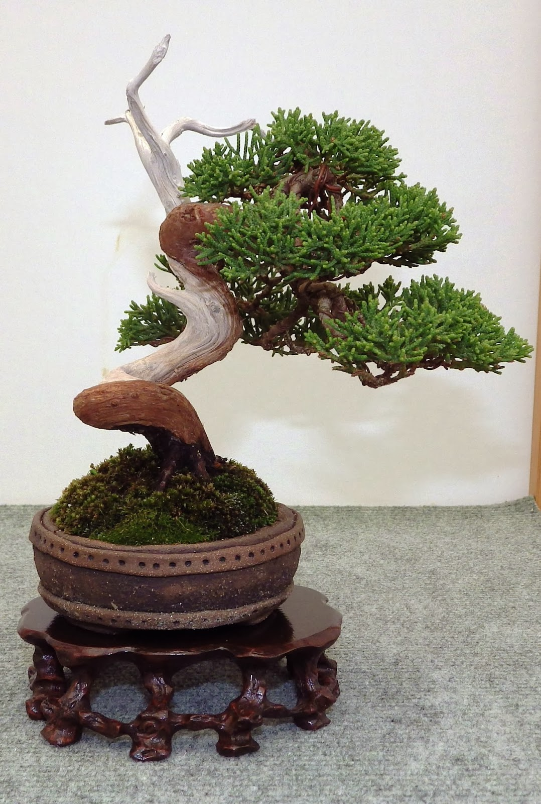 Bespoke Bonsai Stands March 2014