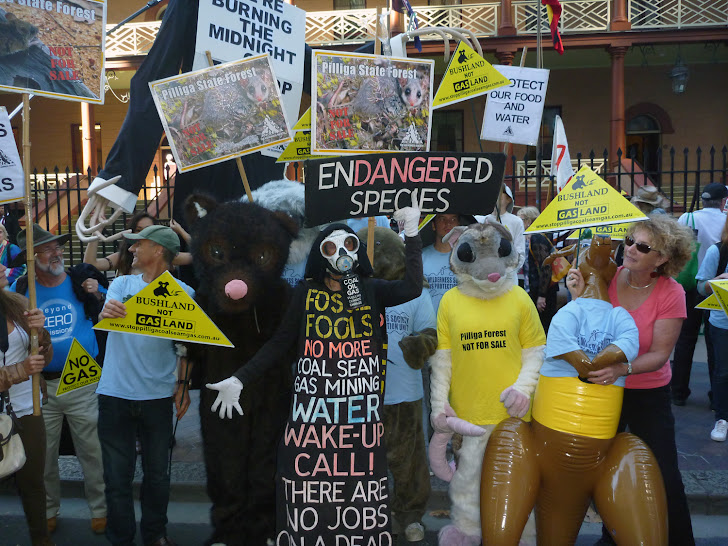 Paws for thought outside parliament after the 1/5/12 Land and Water Rally