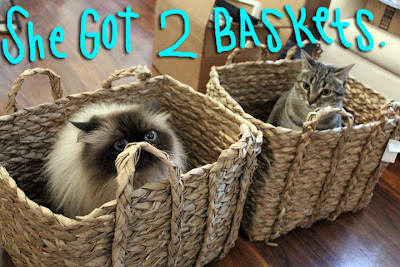 two baskets 02