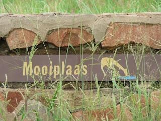 Als drinkplaats is Mooiplaas erg in trek bij het wildlife.