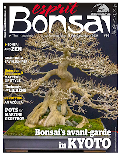 Esprit Bonsai International #98