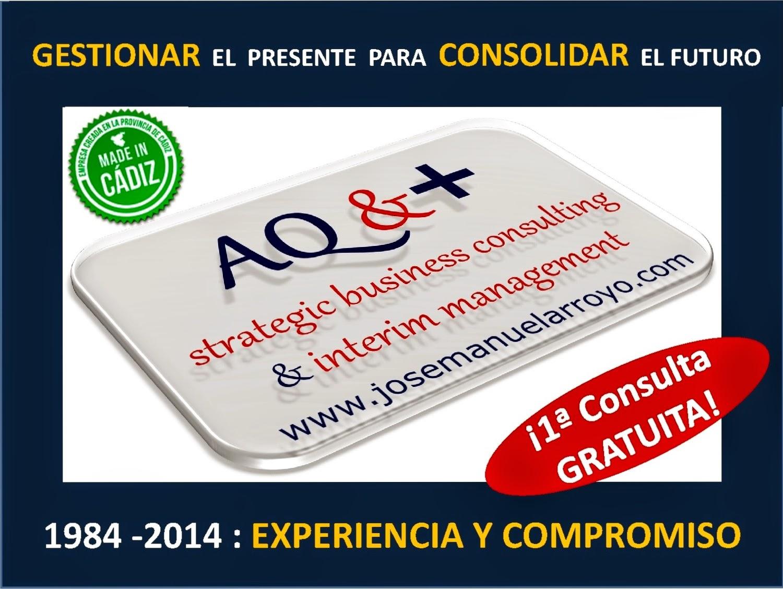Presentación General de Servicios Profesionales