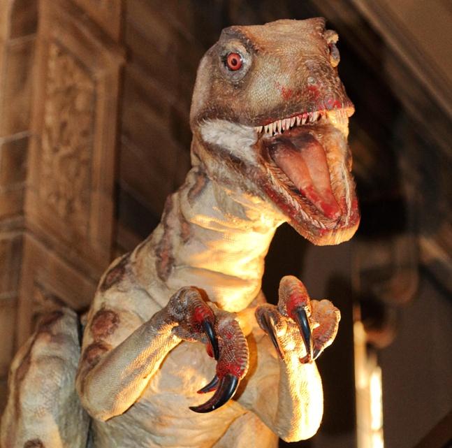 Museo de Historia Natural de Londres: objetivo ver al dinosaurio