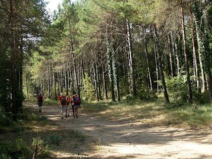 El camí sota la Quintana de Vilarjoan