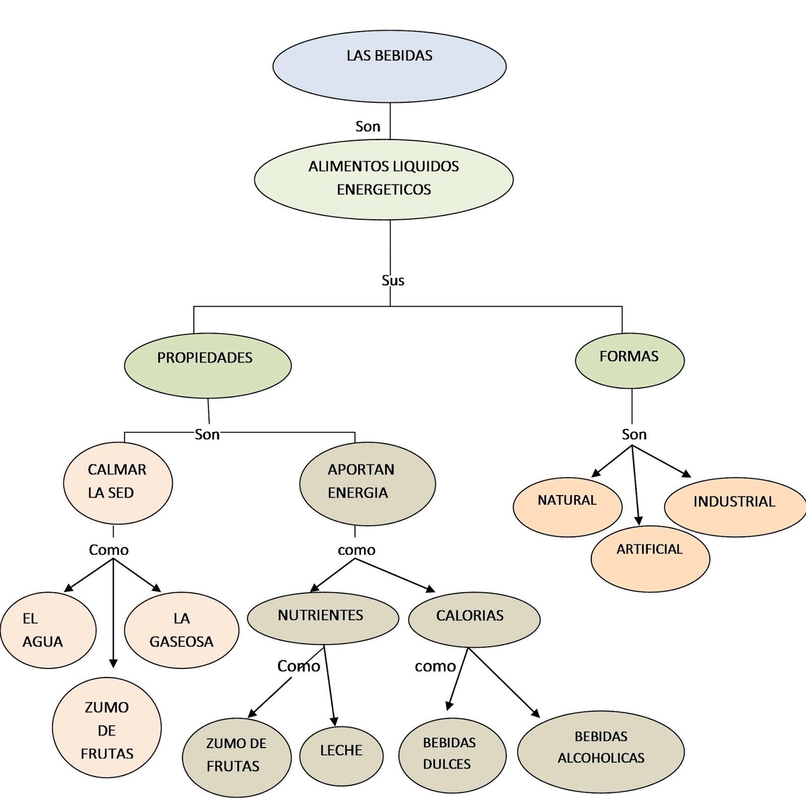 Curso alimentos y bebidas 4 mapas conceptuales for Manual de procedimientos de alimentos y bebidas de un hotel