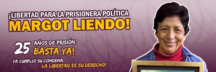 ¡Libertad para la prisionera política Margot Liendo!