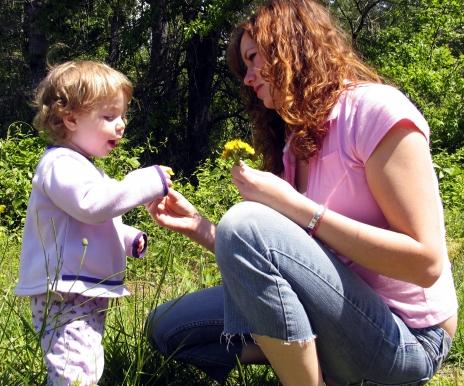 NAMC montessori tips finding right fit new montessori teacher and girl dandelion