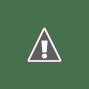 Uma família parte para férias, de carro, GPS ligado.