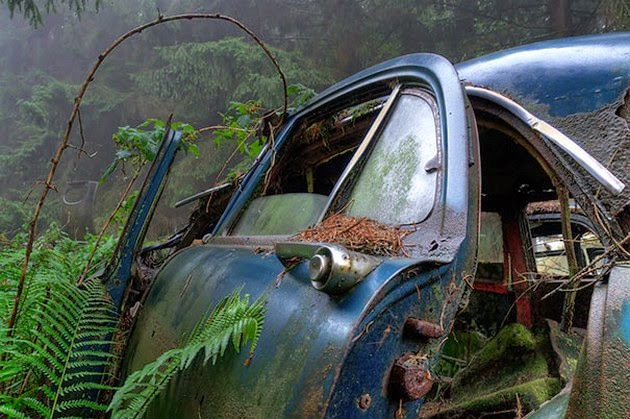 Retro-Car-Cemetery-2