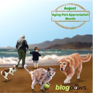 BlogPaws Aging Pet Month