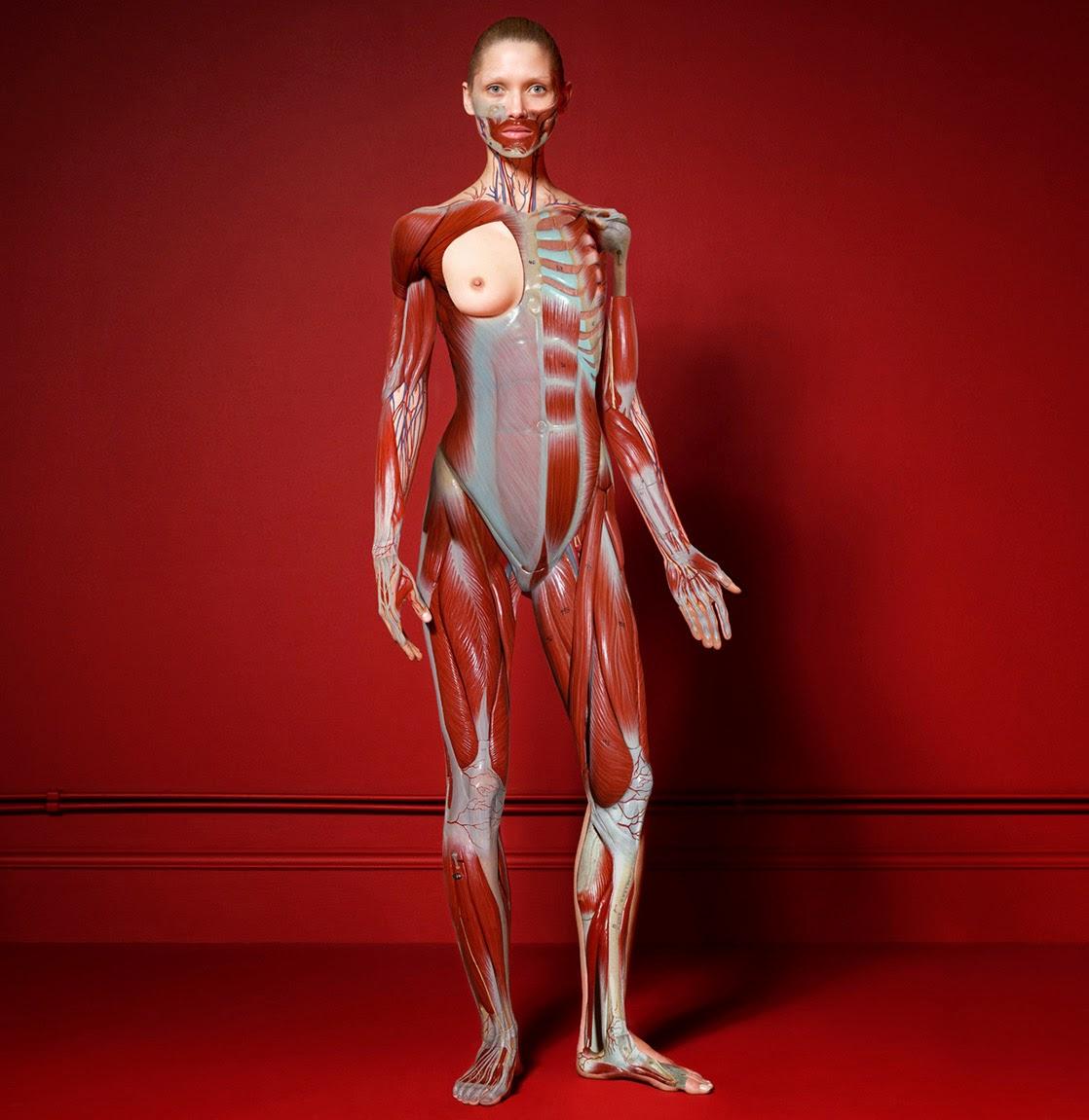 http://3.bp.blogspot.com/-YwAzei34Tcc/Uy1Csx-h0_I/AAAAAAAA1ng/DbmTZkgfjkc/s1600/%25C2%25A9Cuneyt+Akeroglu+-+The+Red+Room+Project-005.jpg