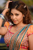 Komal Jha latest dazzling photos gallery-thumbnail-18