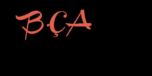 B.Ç.A Gündem  | Bollywood'un Türkiye Adresi