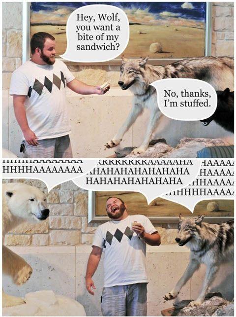 Sandwich Wolf - No, Thanks I'm Stuffed