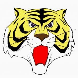 Disegni da colorare uomo tigre for Immagini tigre da colorare