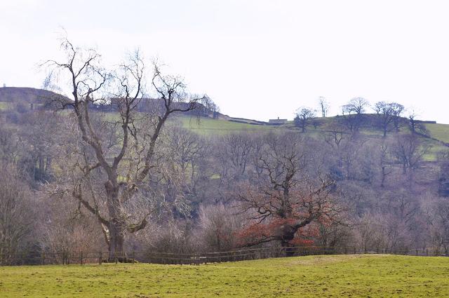 Yorkshire Road Trip