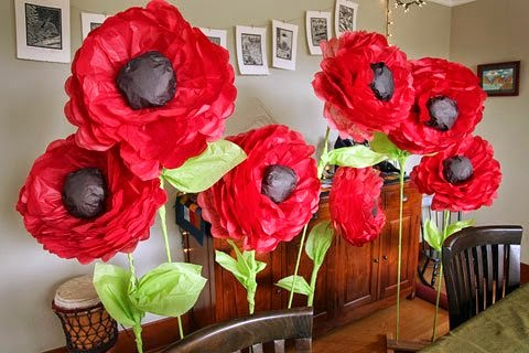 Giant red poppies.