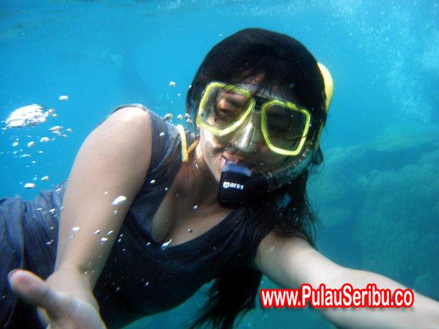 http://3.bp.blogspot.com/-YxVmtEnKqrU/UES-EbIbAgI/AAAAAAAAF64/dt2D2uDooQM/s1600/Paket+Murah+Pulau+Seribu.jpg