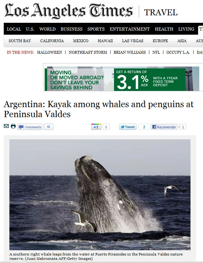 Los Angeles Times Travel - Argentina: Kayak among whales and penguins at Peninsula Valdes
