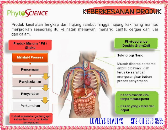 Double Stemcell Harga Ahli Murah - Pakej Biz Phyto
