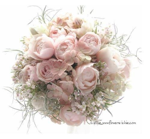 Ortensie Rosa Cipria : La fleur du chat il bouquet della sposa inverno