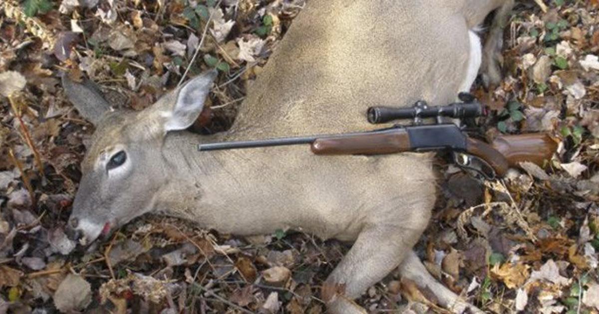 Quiten los programas de caza en RTVE