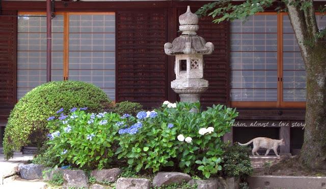 Fujinomori jinja