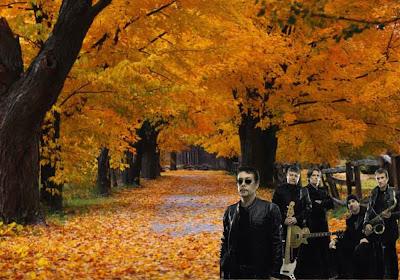 Xutos e Pontapés Wallpapers Grátis Foto da Banda Rock tom negro em fundo de tela clássico Árvores no Outono
