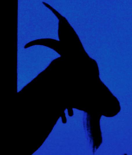 A la mémoire de chèvre Natalie Clifford Barney de l'Orée
