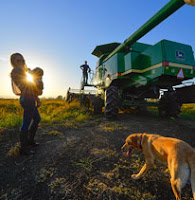 New photos- Barrett Family Rice Harvest