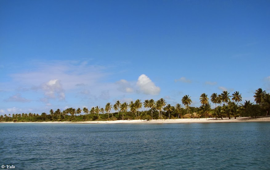 Isla Saona