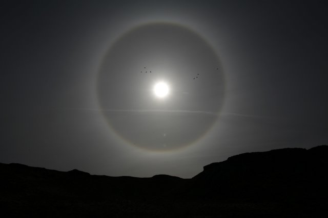 Ring Around Moon In Winter