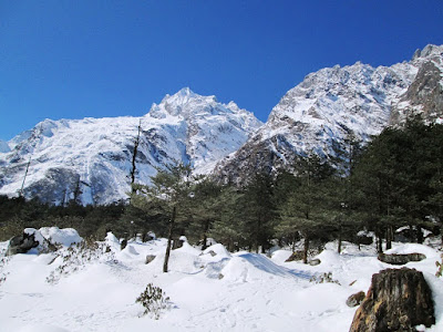 Attractivespot in Sikkim