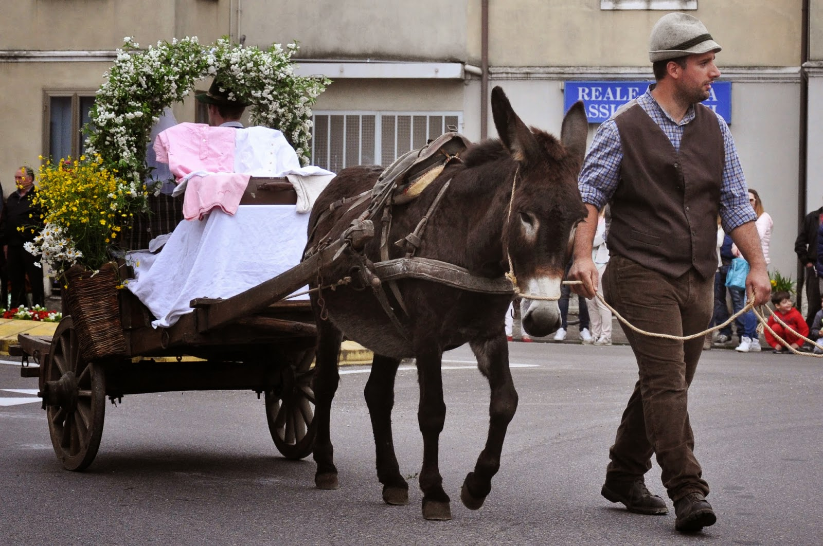 The wedding cart at the Parade, Donkey Race, Romano d'Ezzelino, Veneto, Italy