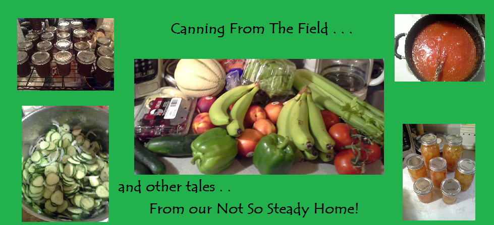 Canning from the Field and other tales from my Not so Steady Home!