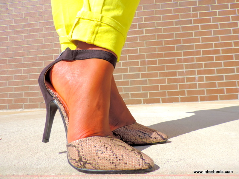 shoedazzle.com pumps