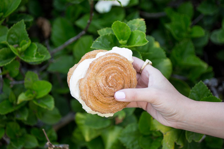Disneyland Food Blog: Churro Ice Cream Sandwhich