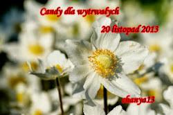 Wygrana w Candy dla Wytrwałych 20. 11