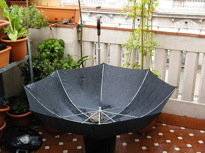 Recogiendo agua de lluvia mi huerto urbano - Recoger agua de lluvia ...