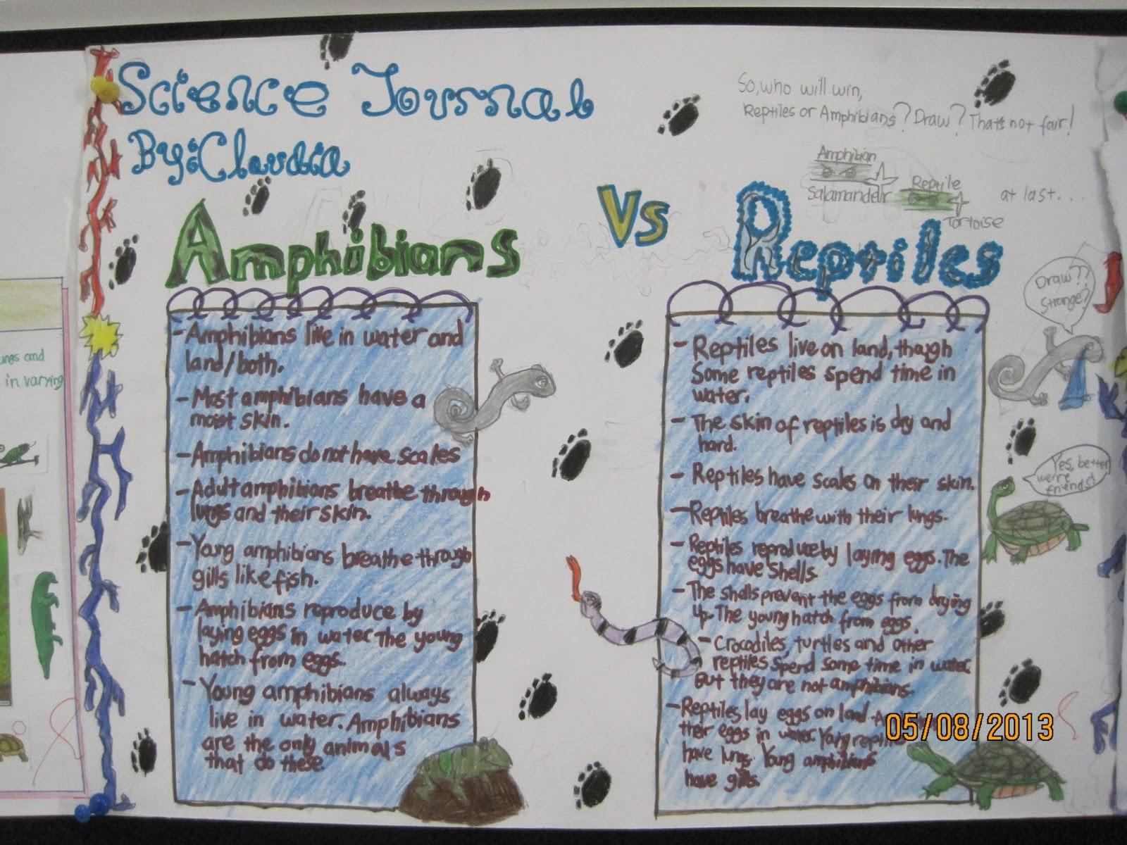 Amphibians Journal Our Fantastic Journey ...