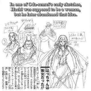 Fakta One Piece terbaru Nami hachi