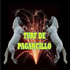 TURF DE PAGANCILLO