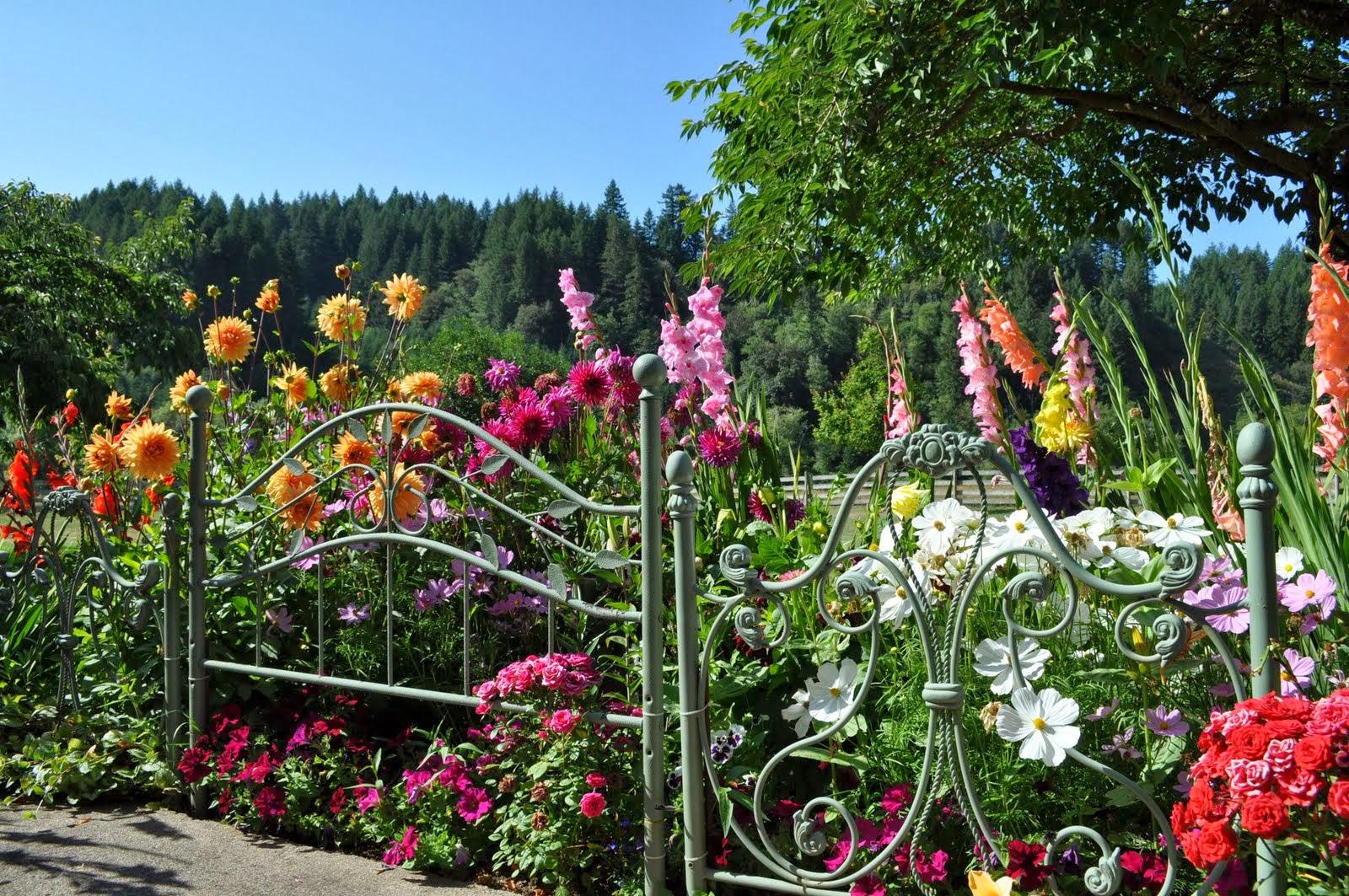 The art of up cycling garden fencing ideas crazy random