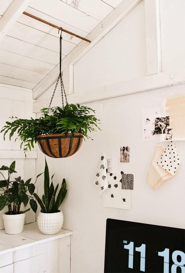 Inspírate: Decorando un despacho con plantas naturales