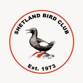 SHETLAND BIRD CLUB