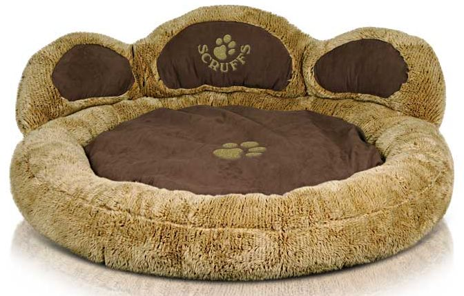 Every thing about dogs general information for Unique beds for sale