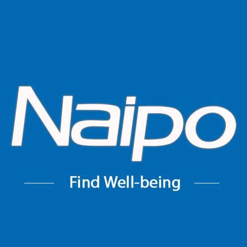Collaborazione con Naipo