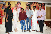 Rough movie audio success meet-thumbnail-13