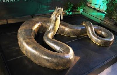 8 ular terbesar di dunia yang pernah tertangkap ilmusiana foto titanoboa ular terbesar di dunia reheart Image collections