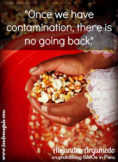 """""""Once we have contamination, there is no going back."""" -Alejandro Argumedo, on prohibiting GMOs in Peru - Peru protects Biodiversity banning GMOs and Monsanto"""